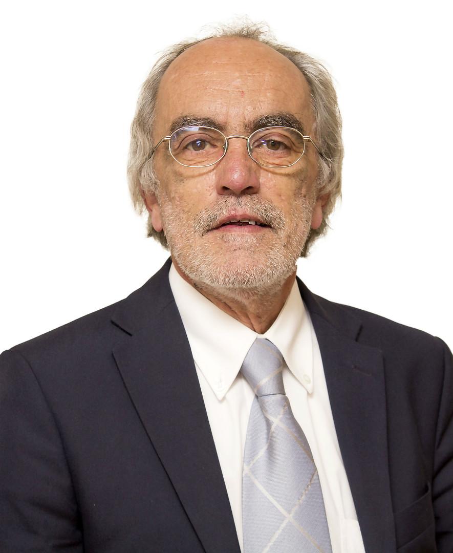 Luis Bem Haja