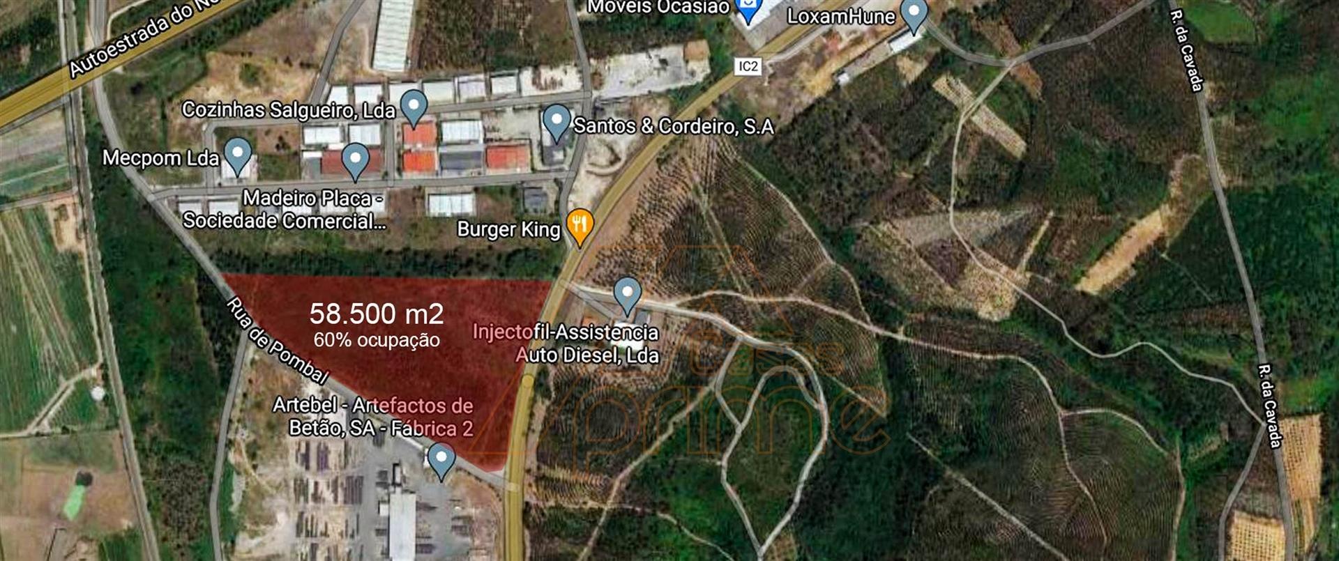 Lote Industrial, Leiria